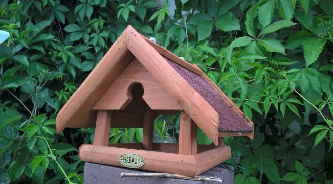 Vogelhaus aufstellen – so macht man es richtig