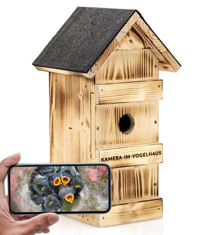 Nistkasten-mit-WLAN-Kamera-von-kamera-im-vogelhaus