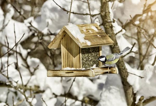 Futtersilo Vogelschutz