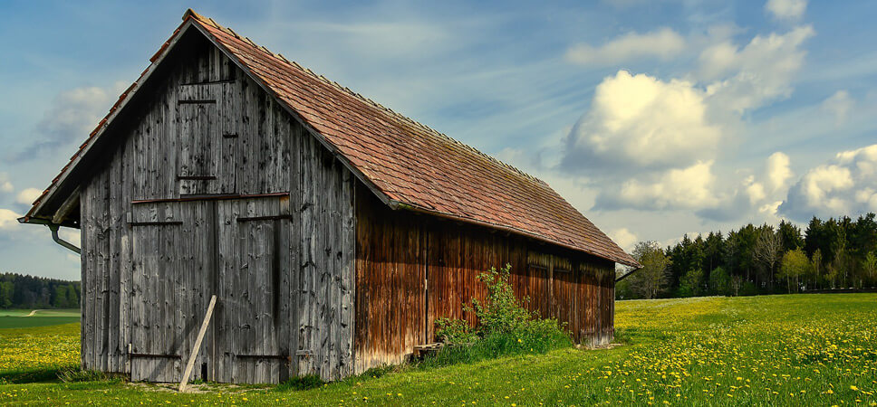 vogelfreundlicher-Garten-Hütte