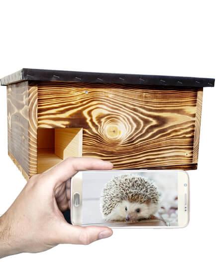 Igelhaus-mit-Kamera