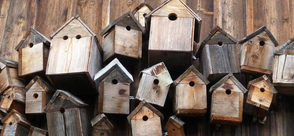 Nistkastentypen für Gartenvögel