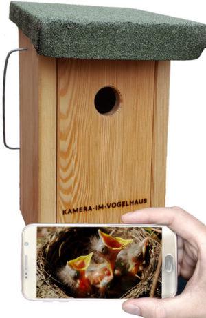 Vogelhaus mit Kamera Bechstein